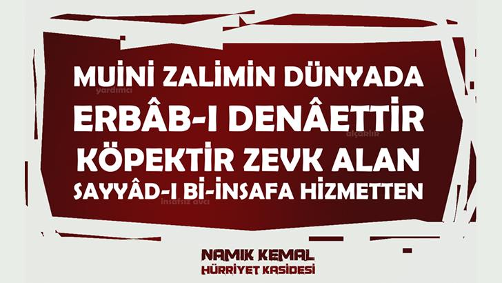 Hürriyet Kasidesi Açıklaması, Türkçesi, Tahlili
